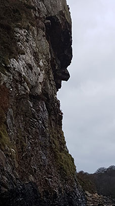 Llanbedrog Headland - Face in the rock